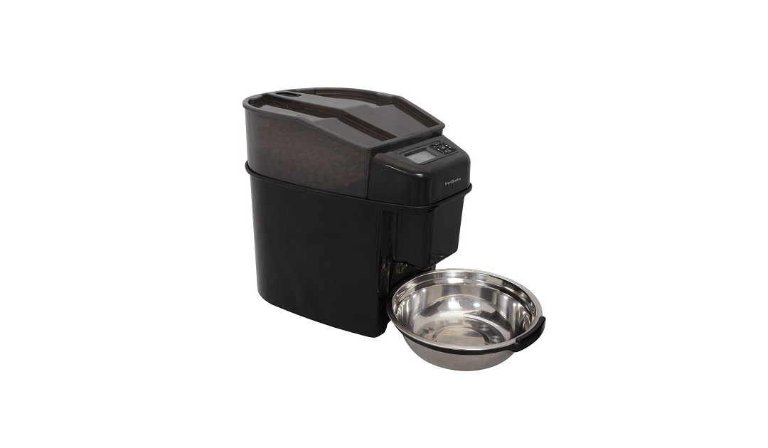 The Best Automatic Cat Feeder Reviews & A Detailed Buying Guide