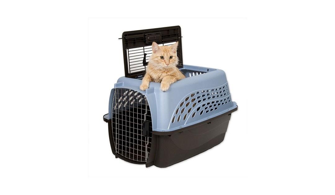 The Best Cat Carrier