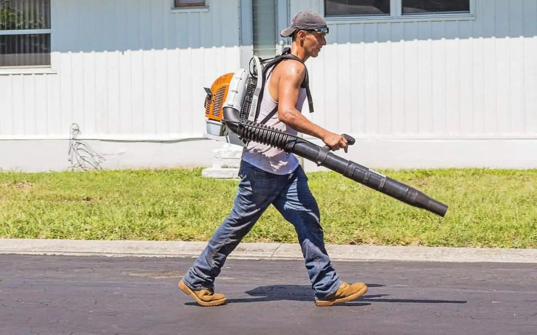 Choosing the Best Leaf Blower for Your Yard