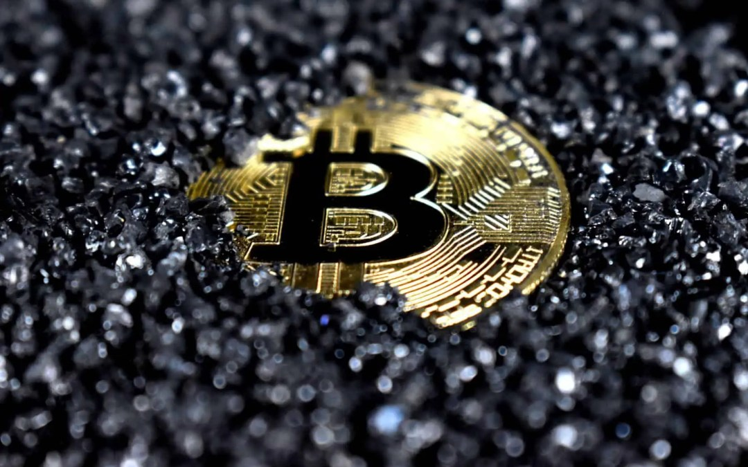 What Forces Drive Crypto Prices?