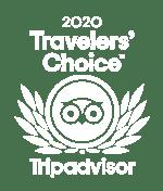 Tripadvisor Traveler's Choice Award Winner