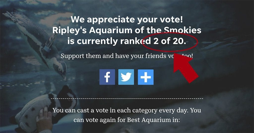 Voting for USA Today's 10Best ends July 6 and Ripley's Aquarium of the Smokies, at the time of this writing, is in 2nd place. (screenshot from USA Today 10Best)
