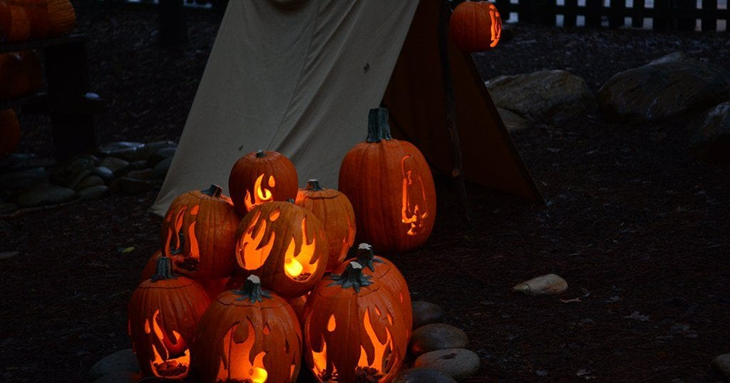 The Dollywood LumiNights event ends Oct, 31 2020 (photo by Daniel Munson/TheSmokies.com)