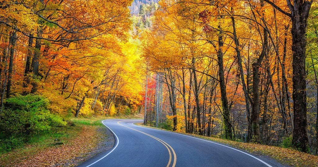 If you're on an autumn trek to see natural beauty in the Great Smoky Mountains, you've come to the right place (stock photo)