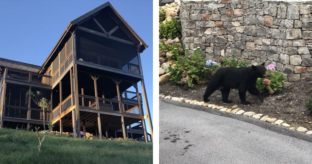 Stunning Views is located in the popular Chalet Village neighborhood – known for its convenient location, stunning views and frequent bear sightings (photos courtesy of VRBO)