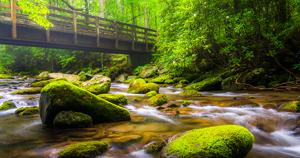 A walking bridge over the Oconaluftee River, at Great Smoky Mountains National Park in North Carolina (stock photo)