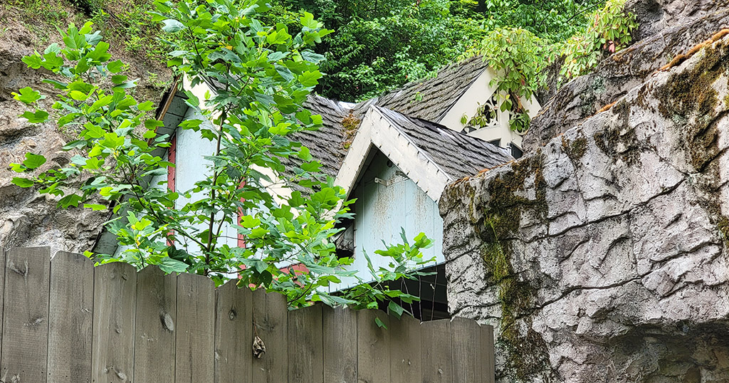 Dollywood Inventor's Mansion Remains