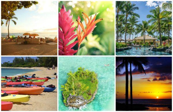 Hawaii Collage