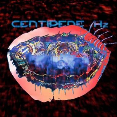 Animal Collective Centipede Hz album cover image