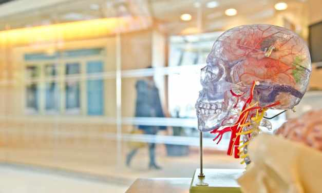 5 Neuroplasticity Exercises the Top 3% of the Happy and Successful Do