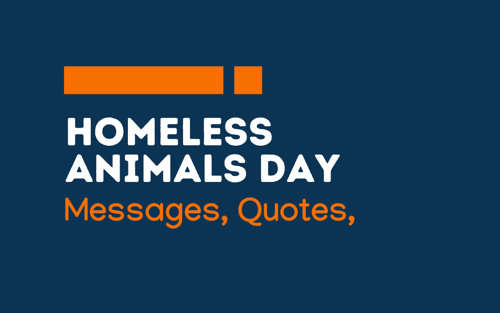 Homeless Animals Day: 62+ Greetings, Message, Quotes