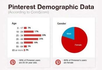 Pinterest Demographic Data from 2012