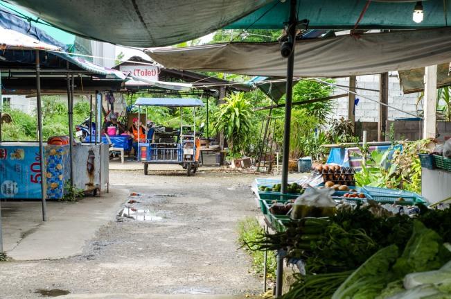 Tailandia sola - Thailand Alone ; The Solivagant Soul