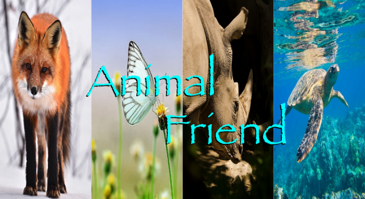 animal friend