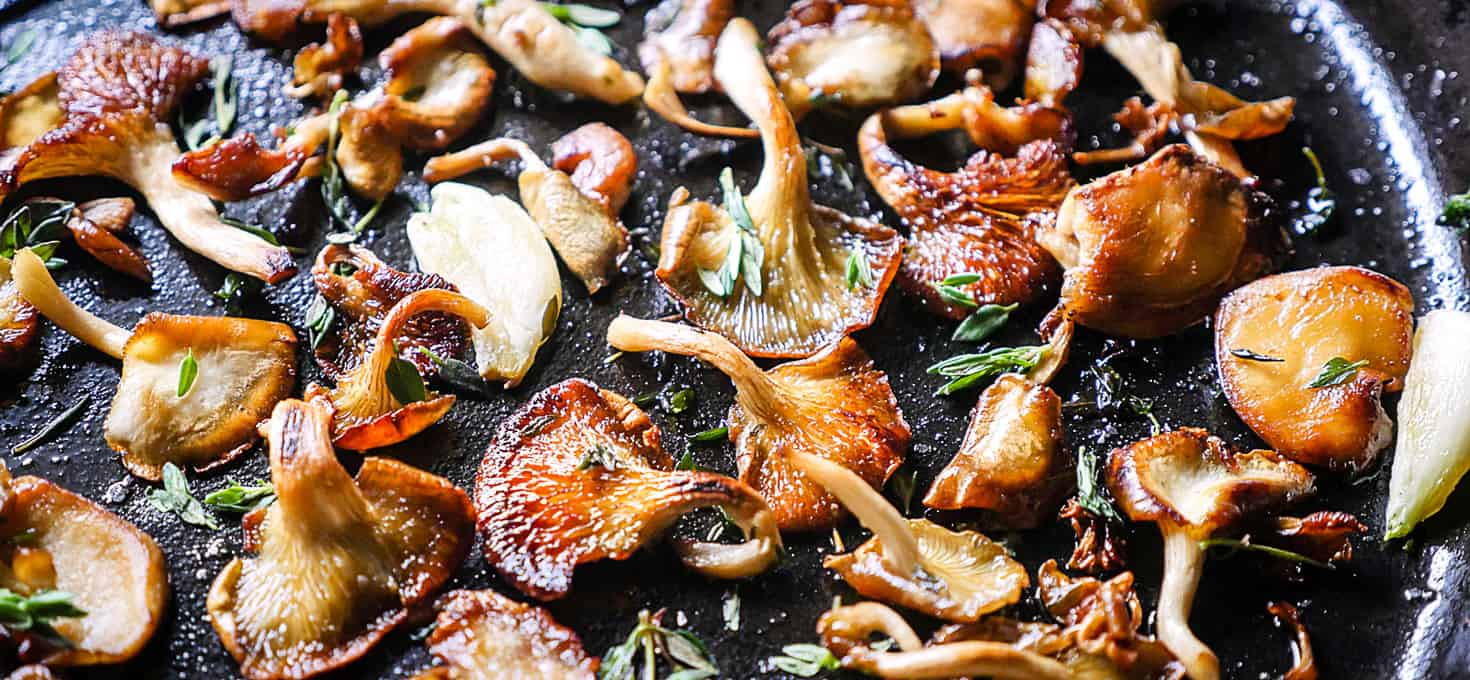 Pan Fried Oyster Mushrooms - The Sophisticated Caveman