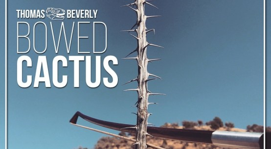 Bowed Cactus Cover