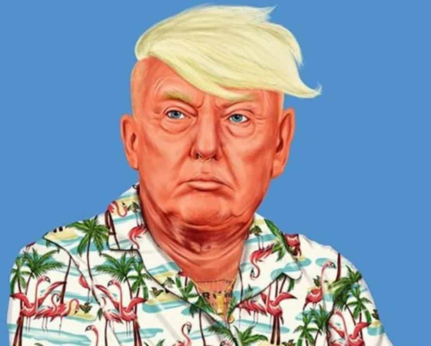 Donald Trump HIPSTORY