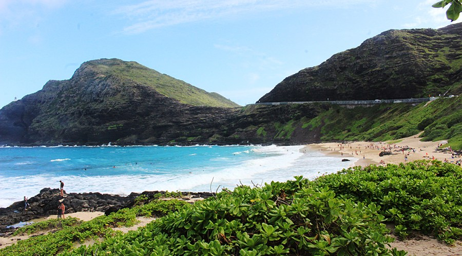 The beach in Honolulu.