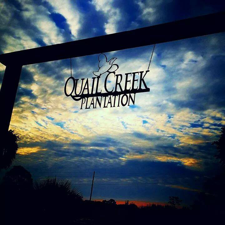 A sunset shot of Quail Creek Plantation.