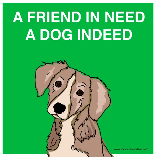 A friend in need a dog in need