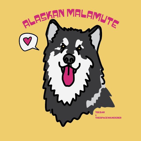 Alaskan Malamute illustration