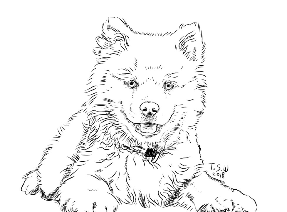 Free Coloring Book Dogs Themed