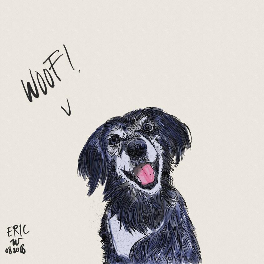 Gambar sketsa anjing