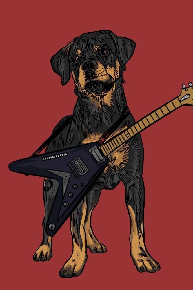 gambar anjing rottweiler