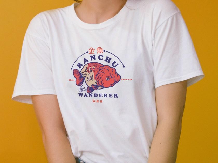 cute ranchu goldfish