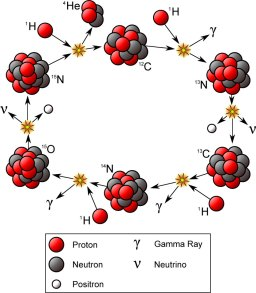 The CNO cycle (for carbon-nitrogen-oxygen) is another type of fusion reaction; it occurs in stars that are at least 1.5 times the mass of the Sun. Four protons fuse using carbon, nitrogen, and oxygen isotopes to create heat and light. Courtesy Wikipedia