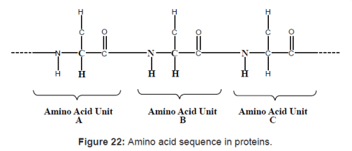Amino acid sequence in proteins.