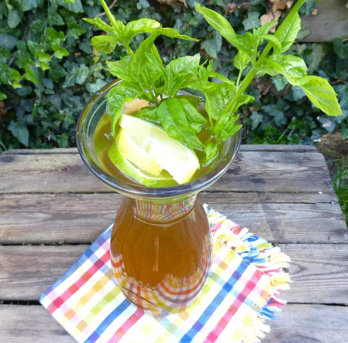picture of a pitcher filled with elderflower cordial garnished with mint and lemons