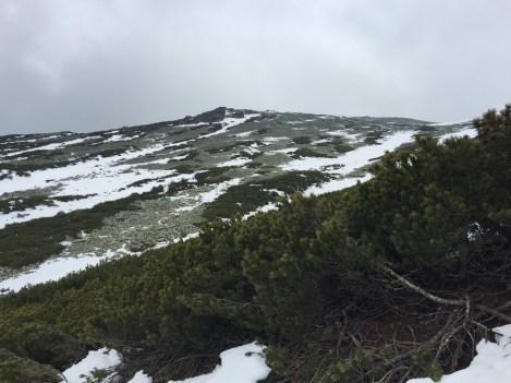 Snowy peaks on our hike