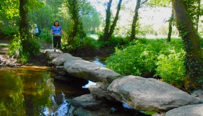 Crossing Stream