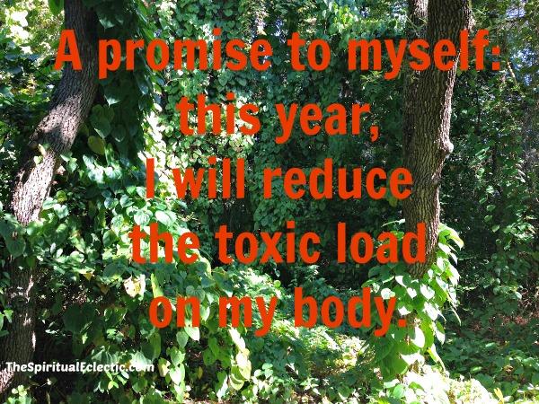 Toxic Load