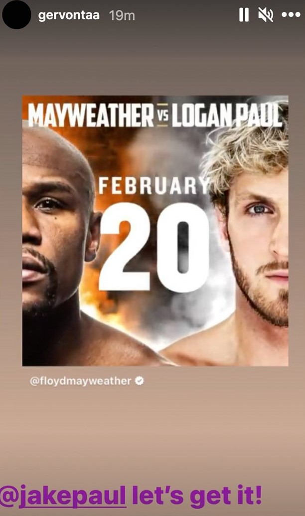 A disgrace to the sport: Boxing fandom rages over Floyd Mayweather-Logan Paul exhibition fight - THE SPORTS ROOM