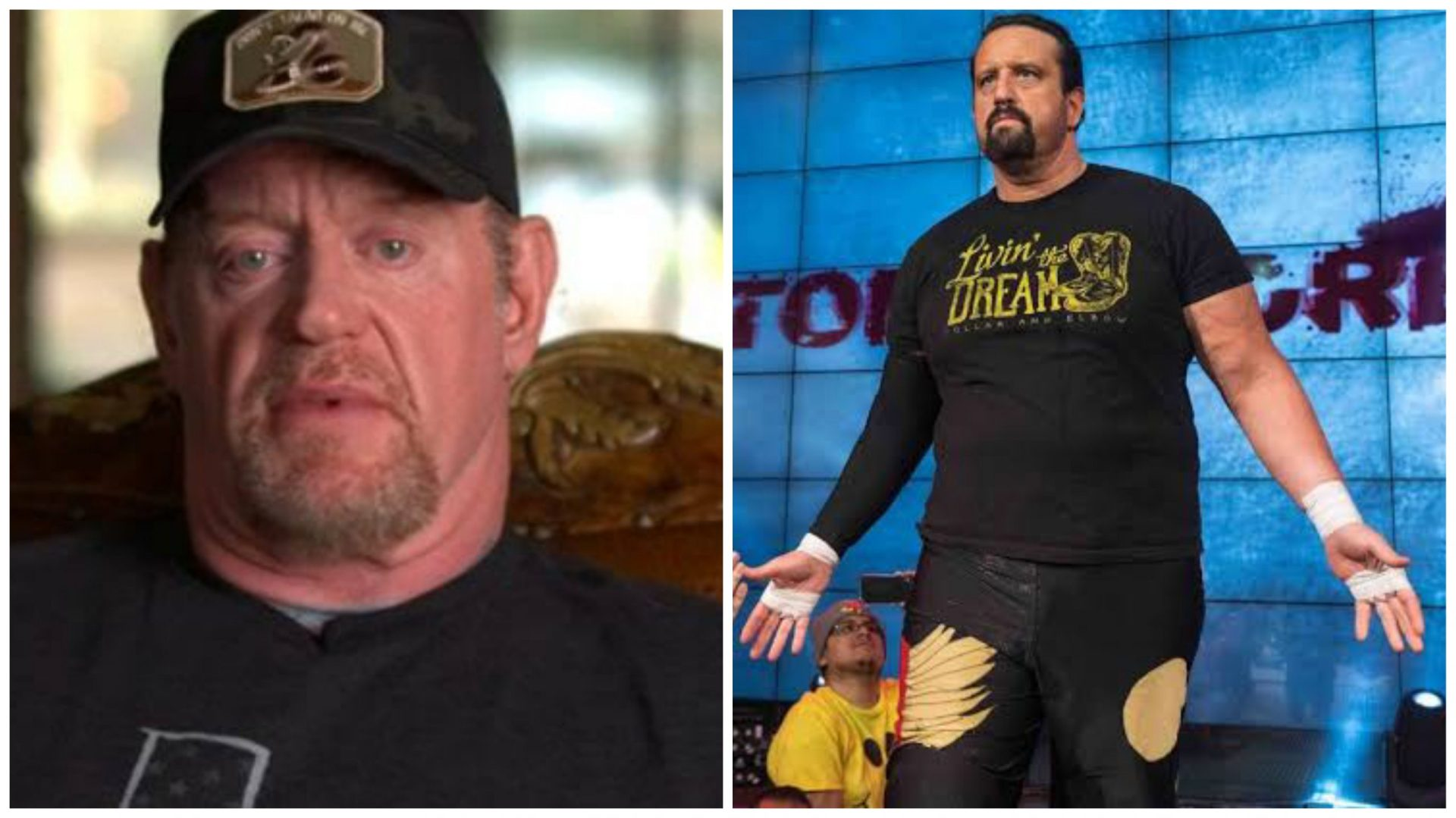 Tommy Dreamer reacts to The Undertaker's opinion of pro-wrestling going soft - THE SPORTS ROOM