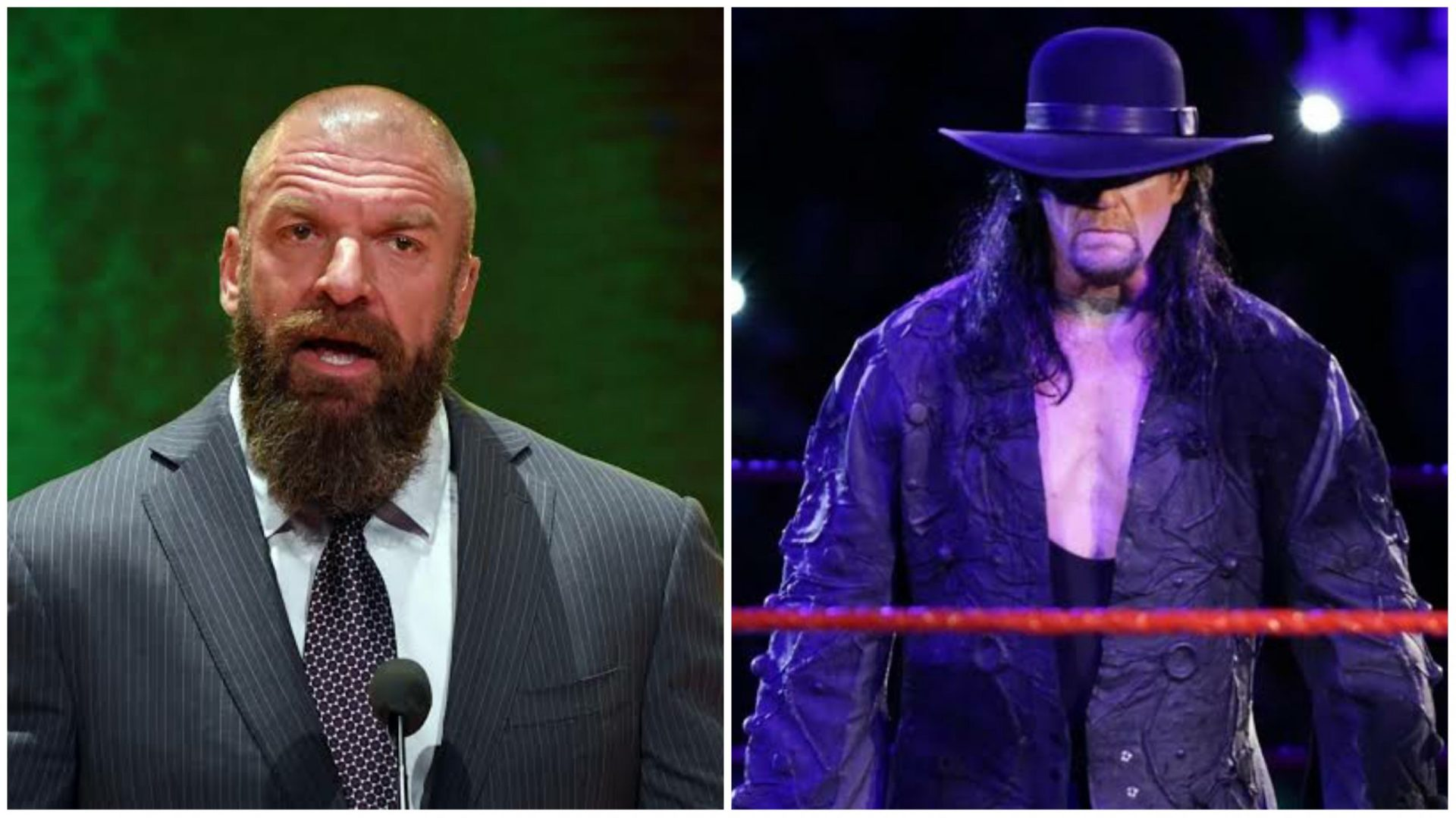 Triple H reacts To The Undertaker's comment on modern professional wrestlers - THE SPORTS ROOM