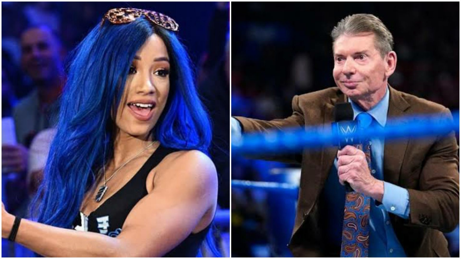 Vince McMahon to scout talent, Sasha Banks to train at WWE Performance Center - THE SPORTS ROOM