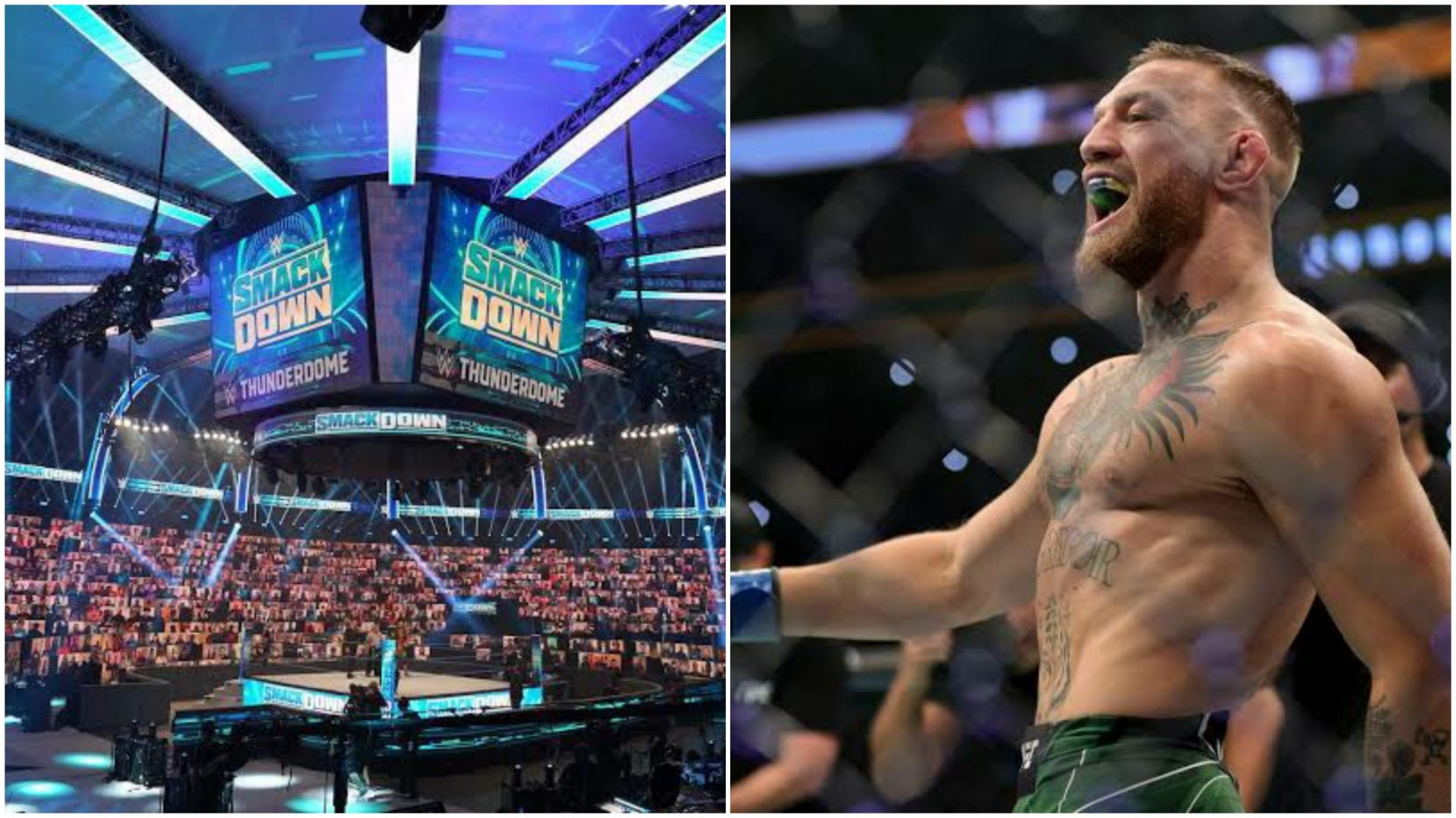 Former WWE Intercontinental Champion puts forward his opinion on Conor McGregor potentially joining WWE - THE SPORTS ROOM