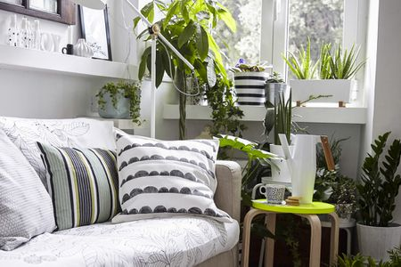decorate living room pictures photo of beautiful 22 smart and stylish ways to empty corners corner filled with houseplants