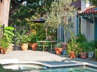 Small Space Gardening - Gardening on a Patio or Terrace