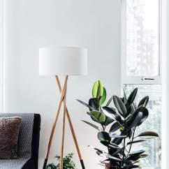 Living Room Tree Dark Gray Sofa Ideas 10 Most Popular Indoor Trees Rubber In