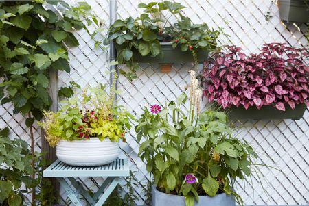 16 outdoor wall decor ideas