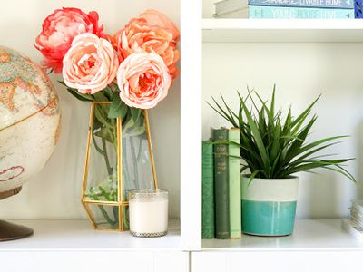 diy projects for the