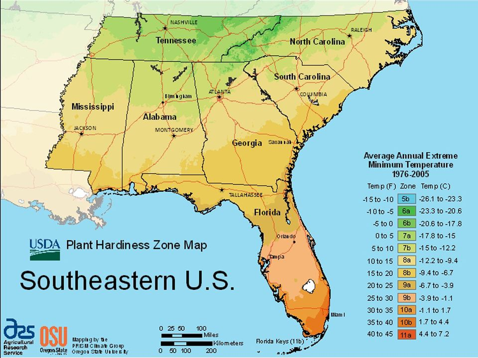 What Your Plant Hardiness Zone Is And Why It Matters My Little Green Garden