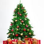 The 8 Best Places To Buy A Christmas Tree In 2020