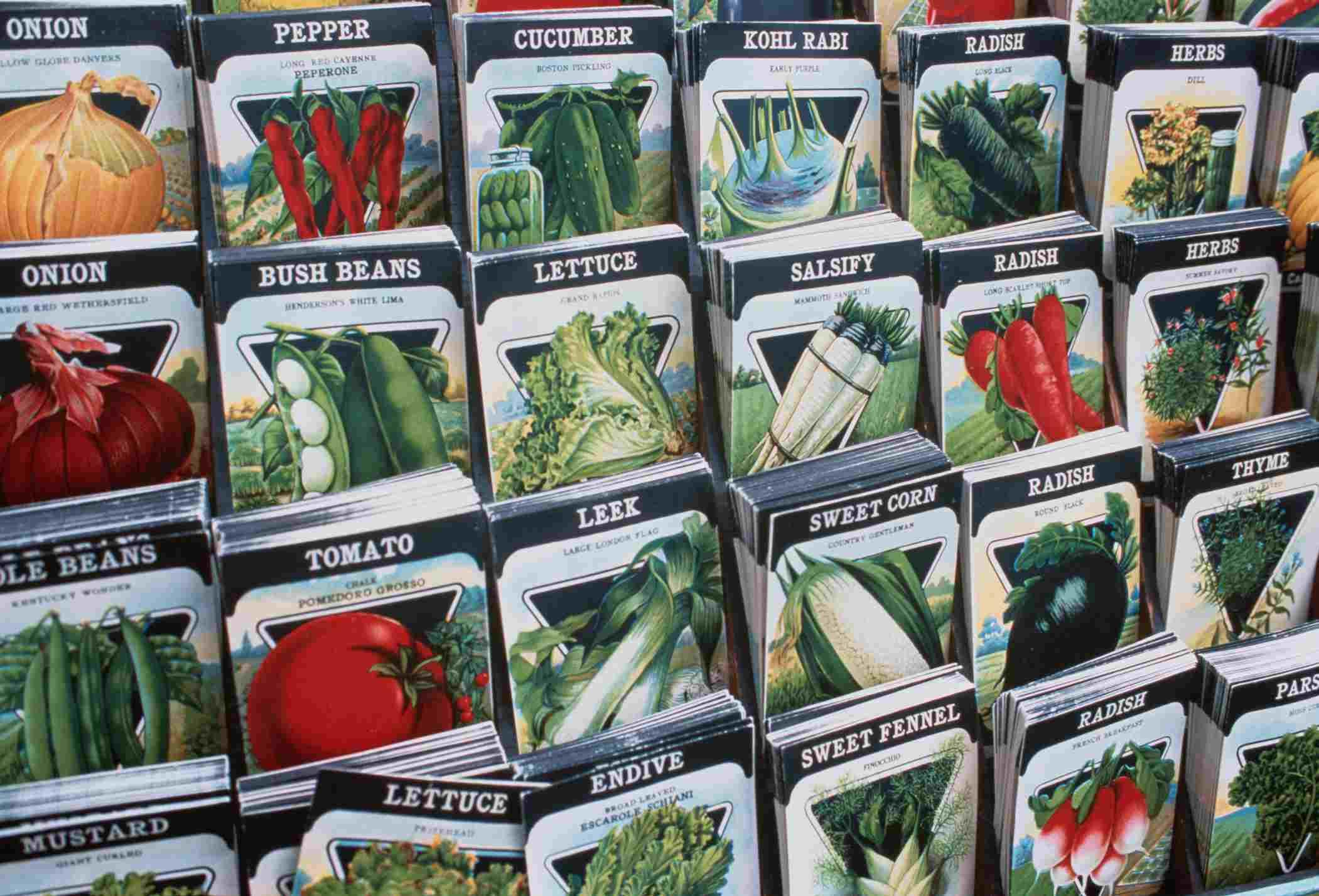 Free Printable Garden Notebook Sheets