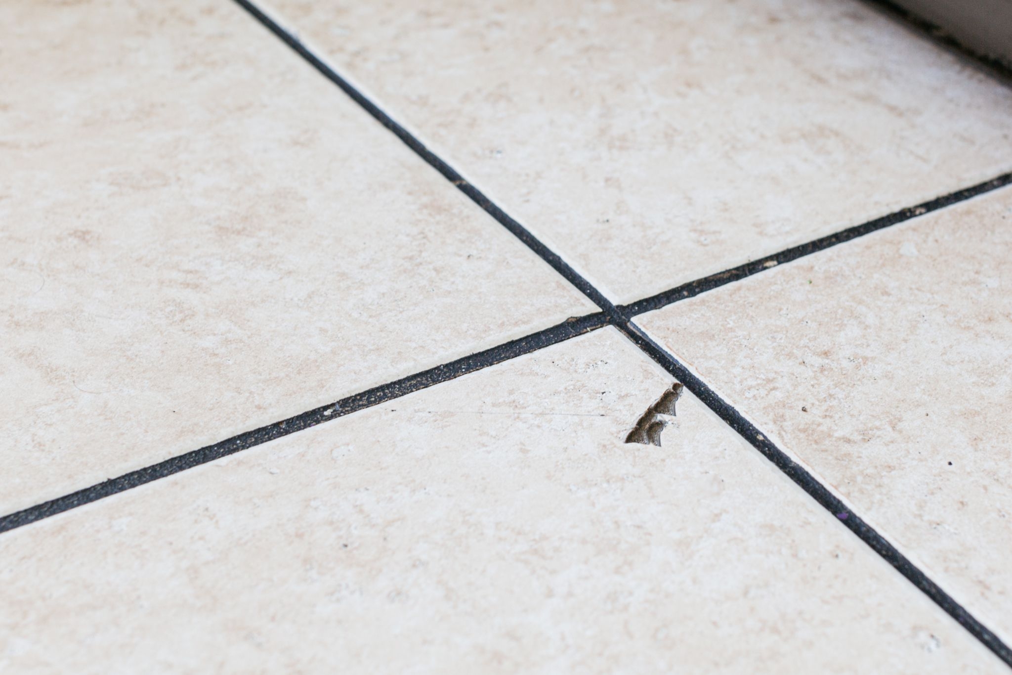 reasons for cracked floor and wall tile