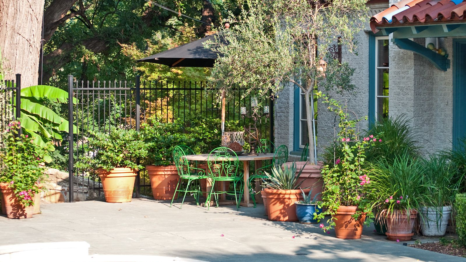 small space gardening gardening on a